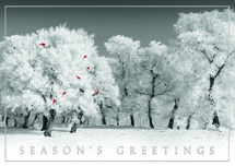 Snowy Escape Holiday Cards